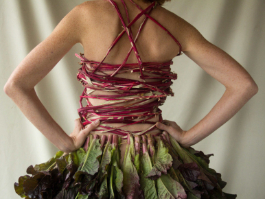Food Waste Taking Over Fashion Industry