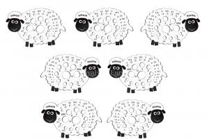 Sheep Needle Gauge Bundle